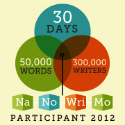National November Novel Writing Month Participantt